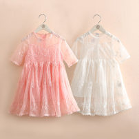 Dress spring and autumn fresh other Fluffy skirt other Class B female Shell element Other 100% 14, 13, 12, 11, 10, 9, 8, 7, 6, 5, 4, 3, 2 qz5090 White, pink 90cm,100cm,110cm,120cm,130cm,140cm