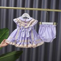 Dress Purple Butterfly skirt female Other / other 80 (height 70-80), 90 (height 80-90), 100 (height 90-100), 110 (height 100-110), 120 (height 110-120) Cotton 95% other 5% summer princess Short sleeve other cotton A-line skirt E21209 Class A Chinese Mainland