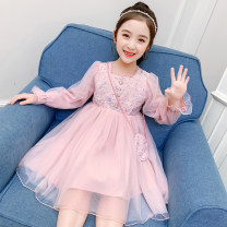 Dress Sequin dress pink, Sequin dress blue female Other / other Size 110 (for height 100-110cm), Size 120 (for height 110-120cm), Size 130 (for height 120-130cm), size 140 (for height 130-140cm), size 150 (for height 140-150cm), size 160 (for height 150-160cm) Cotton 50% other 50% spring and autumn