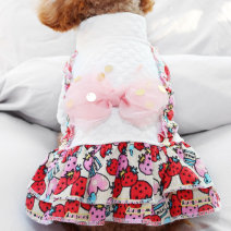 Pet clothing / raincoat Dog Dress XS (about 2 kg) s (about 4 kg) m (about 8 kg) l (about 10 kg) XL (about 15 kg) Le Shuang pet leisure time Big bow Feifei skirt