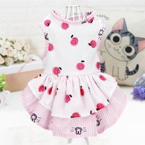 Pet clothing / raincoat currency Dress XS - suitable for about 1-3 kg s - suitable for about 3-5 kg m - suitable for about 5-7 kg L - suitable for about 8-10 kg XL - suitable for about 10-12 kg Poohlo / vinylor leisure time