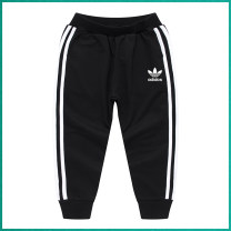 trousers Hi Adidas neutral spring trousers Korean version There are models in the real shooting Casual pants Leather belt middle-waisted Open crotch Class A 18 months, 2 years old, 3 years old, 4 years old, 5 years old, 6 years old, 7 years old, 8 years old, 9 years old, 10 years old Chinese Mainland