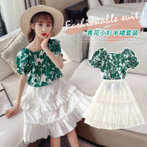 suit Other / other green 120cm,130cm,110cm,140cm,150cm,160cm female summer princess Short sleeve + skirt 2 pieces Thin money There are models in the real shooting Socket nothing Broken flowers cotton children Expression of love Class B Other 100% Chinese Mainland