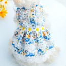 Pet clothing / raincoat currency Dress Meng Ruidi princess