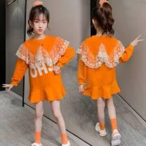 Sweater / sweater Other / other Orange lace skirt 1177, black lace skirt 1177, white T-shirt 1176 female 110cm,120cm,130cm,140cm,150cm,160cm,170cm spring and autumn princess