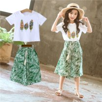 suit Other / other The recommended height is 100cm for Size 110, 110cm for Size 120, 120cm for Size 130, 130cm for size 140, 140cm for size 150 and 150cm for size 160 female summer Korean version Short sleeve + pants 2 pieces routine There are models in the real shooting Socket nothing other children