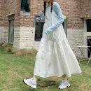 Fashion suit Winter 2016 Average size Blue background, white suspender skirt 18-25 years old