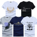 T-shirt Youth fashion thin Others Short sleeve Crew neck easy daily Four seasons teenagers routine tide Cotton wool 2019 cotton 3D effect Non brand 50% (inclusive) - 69% (inclusive)