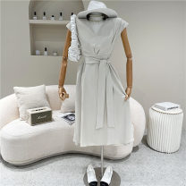 Dress Spring 2021 Light grey, black S,M,L 18-24 years old 51% (inclusive) - 70% (inclusive)