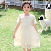 Dress Apricot female Other / other 110cm,120cm,130cm,140cm,150cm,160cm Other 100% summer princess Short sleeve Solid color chemical fiber Cake skirt Class A