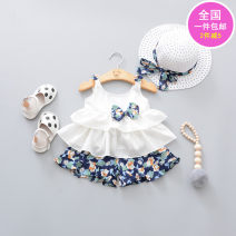 suit Other / other female summer Korean version Short sleeve + pants 2 pieces routine No model Socket nothing Broken flowers cotton children Expression of love Class A Cotton 100%