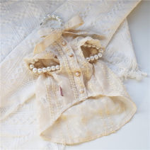 Pet clothing / raincoat currency Dress XS,S,M,L,XL,XXL,XXXL,xxs Weipet town princess Apricot (scheduled to ship in 10-15 days)