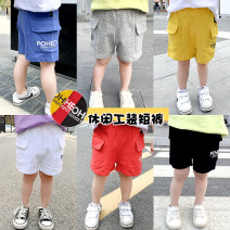 trousers male Size 90, size 100, Size 110, Size 120, Size 130 summer shorts motion There are models in the real shooting Casual pants Leather belt middle-waisted cotton Don't open the crotch Cotton 100% Class B 2 years old, 3 years old, 4 years old, 5 years old, 6 years old, 7 years old, 8 years old