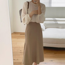 Fashion suit Winter 2020 S,M,L Top, skirt 18-25 years old Other / other 51% (inclusive) - 70% (inclusive)
