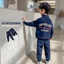 suit Haima house 100cm,110cm,120cm,130cm,140cm,150cm,160cm male spring and autumn Korean version Long sleeve + pants 2 pieces routine There are models in the real shooting Zipper shirt nothing Solid color cotton children Giving presents at school Class B 2, 3, 4, 5, 6, 7, 8, 9, 10, 11