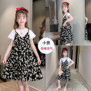 Dress Black, white female Other / other 110cm,120cm,130cm,140cm,150cm,160cm,170cm Cotton 90% polyester 10% summer fresh Short sleeve Broken flowers cotton Cake skirt Class B 14, 3, 5, 9, 12, 7, 8, 6, 13, 11, 4, 10 Chinese Mainland Zhejiang Province Huzhou City