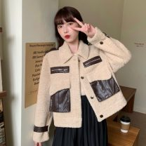 short coat Autumn 2020 Apricot, black Long sleeves routine thickening singleton  easy routine Polo collar Single breasted 51% (inclusive) - 70% (inclusive) Pocket, zipper