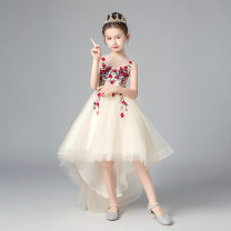 Dress Summer of 2019 Long picture color, short in front and long in back longuette singleton  Sleeveless S517