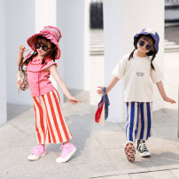 trousers Xiaomi candy female 80cm,90cm,100cm,110cm,120cm,130cm,140cm Red and white striped knitwear, blue and white striped knitwear summer trousers Europe and America There are models in the real shooting Woolen trousers middle-waisted cotton Don't open the crotch Chinese Mainland Guangdong Province