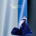 Fabric / fabric / handmade DIY fabric Others Loose shear rice Solid color other clothing Europe and America Taidao cloth industry Thick satin