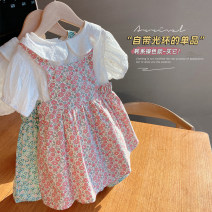 suit Other / other Pink, green 7 (order according to size chart), 9 (order according to size chart), 11 (order according to size chart), 13 (order according to size chart), 15 (order according to size chart) female summer Korean version Short sleeve + skirt 2 pieces Thin money No model Socket nothing