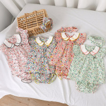 suit Other / other female summer princess Short sleeve + pants 3 pieces Thin money No model Socket nothing flower cotton children Expression of love Class A Cotton 90% other 10% 3 months, 6 months, 12 months, 9 months, 18 months, 2 years old