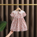 Dress Pink female Dr. Black  90cm,100cm,110cm,120cm,130cm Cotton 95% other 5% summer Countryside Short sleeve Broken flowers cotton A-line skirt 2021-4.42-B09 Class A 12 months, 9 months, 18 months, 2 years old, 3 years old, 4 years old, 5 years old, 6 years old, 7 years old Chinese Mainland