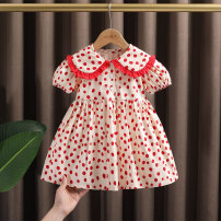 Dress Apricot female Dr. Black  80cm,90cm,100cm,110cm,120cm,130cm Cotton 95% other 5% summer Sweet Short sleeve Dot cotton A-line skirt Class A 12 months, 9 months, 18 months, 2 years old, 3 years old, 4 years old, 5 years old, 6 years old, 7 years old Chinese Mainland Zhejiang Province