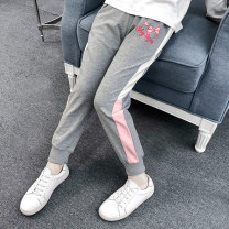 trousers Other / other female 110cm,120cm,130cm,140cm,150cm,160cm Grey bow printing pants, blue bow printing pants, black bow printing pants, grey three horizontal printing pants, pink three horizontal printing pants, black three horizontal printing pants spring and autumn trousers motion Leggings
