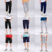 trousers Xiaoll / xiaolinlang neutral 100cm,110cm,120cm,130cm,140cm,150cm summer trousers leisure time There are models in the real shooting Leggings cotton Cotton 95% polyurethane elastic fiber (spandex) 5% 2 years old, 3 years old, 4 years old, 5 years old, 6 years old, 7 years old, 8 years old