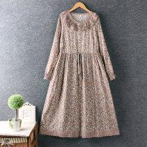 Dress Spring 2021 Green, dark pink Average size longuette singleton  Long sleeves commute Loose waist Decor Socket A-line skirt routine Type A printing cotton