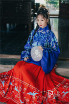 Custom made Hanfu On the coat, horse face under the skirt S. M, l, others Midnight Song Hanfu