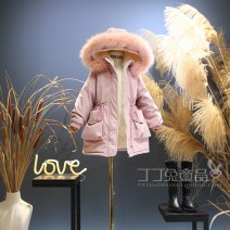 Cotton padded jacket female No detachable cap polyester Other / other Off white, pink thickening Zipper shirt Korean version No model Solid color other Class C Crew neck Polyester 100% Cotton liner Polyester 100% 14, 13, 12, 11, 10, 9, 8, 7, 6, 5, 4