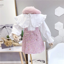 suit Other / other White + Pink 90, 100, 110, 120, 130, 140 female spring and autumn Korean version Long sleeve + skirt 2 pieces routine No model Socket nothing Solid color other elder Expression of love WQ123 Class B Other 100% Chinese Mainland