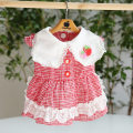 Pet clothing / raincoat currency Dress XS S M L XL Fyongpet / Fengyong Beibei princess Red lattice Sweet strawberry square neck Baby Dress
