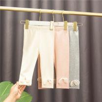 trousers Baobao elephant female 80 # (recommended height about 73cm-80cm), 90 # (recommended height about 85CM), 100 # (recommended height about 90cm), 110 # (recommended height about 100cm), 120 # (recommended height about 110cm) Grey, beige, pink spring trousers Korean version No model Leggings