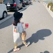 Dress Light grey female Other / other 7(90cm),9(100cm),11(110cm),13(120cm),15(130cm) Other 100% spring and autumn Korean version Long sleeves other other other 2 years old, 3 years old, 4 years old, 5 years old, 6 years old