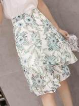 skirt Spring of 2019 S,M,L,XL Red, green Middle-skirt Versatile High waist Irregular Decor Type A 18-24 years old L 51% (inclusive) - 70% (inclusive) Chiffon other