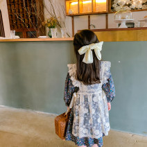 Dress Floral skirt + lace strap skirt [2-piece set] female Other / other 100cm,110cm,120cm Other 100% spring and autumn Korean version Skirt / vest Broken flowers other A-line skirt Class B Three, four, five, six, seven, eight, nine, ten