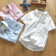 shirt Pink, white, blue, greyish green, white 2 Maybabykids / Chaoji deer male Tag size 14 suggests 160, tag size 6 suggests 125, tag size 10 suggests 140, tag size 12 suggests 150, tag size 8 suggests 130 summer Short sleeve leisure time Solid color cotton Lapel crew neck Cotton 100% Class B