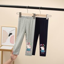 trousers Other / other female 90 = 7, 100 = 9, 110 = 11, 115 = 13, 120 = 15 Gray, blue spring and autumn trousers Korean version There are models in the real shooting Leggings Leather belt middle-waisted cotton Don't open the crotch Cotton 50% polyester 50% Class B R4254 Chinese Mainland