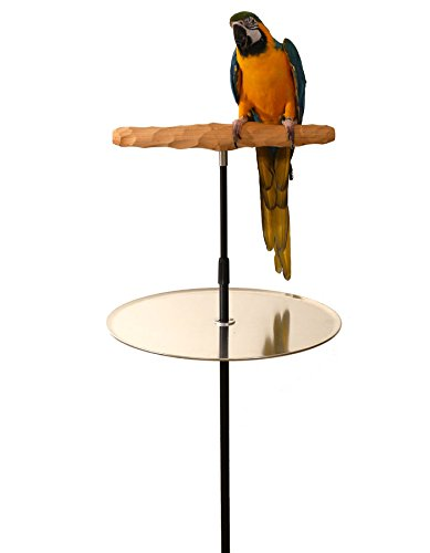 Parrot Training Perch Stand with Potty Tray