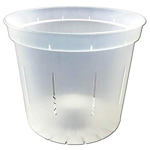 rePotme 6 inch Slotted Orchid Pot - 3 Pack - Crystal Clear
