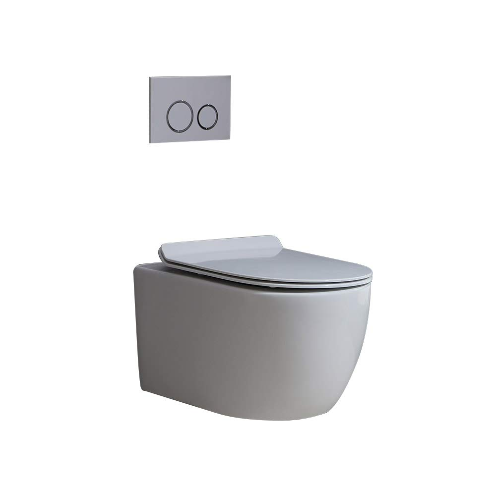 Homary Wall Hung Elongated Toilet Bowl 1.1/1.6 GPF Dual Flush Toilet Ceramic Wall Mount Toilet with In-Wall Tank and Carrier System in White, Water Saving (Bowl And Tank)
