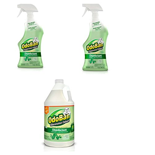 OdoBan Ready-to-Use 32 oz Spray 2 Bottles and 1 Gal Concentrate, Original Eucalyptus Scent - Odor Eliminator, Disinfectant, Flood Fire Water Damage Restoration