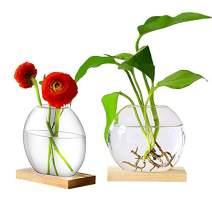 Ivolador 2PCS Desktop Glass Round Planter Terrarium with Retro Solid Wooden Stand for Hydroponics Plants Home Garden Wedding Decor (Brown+Beige)