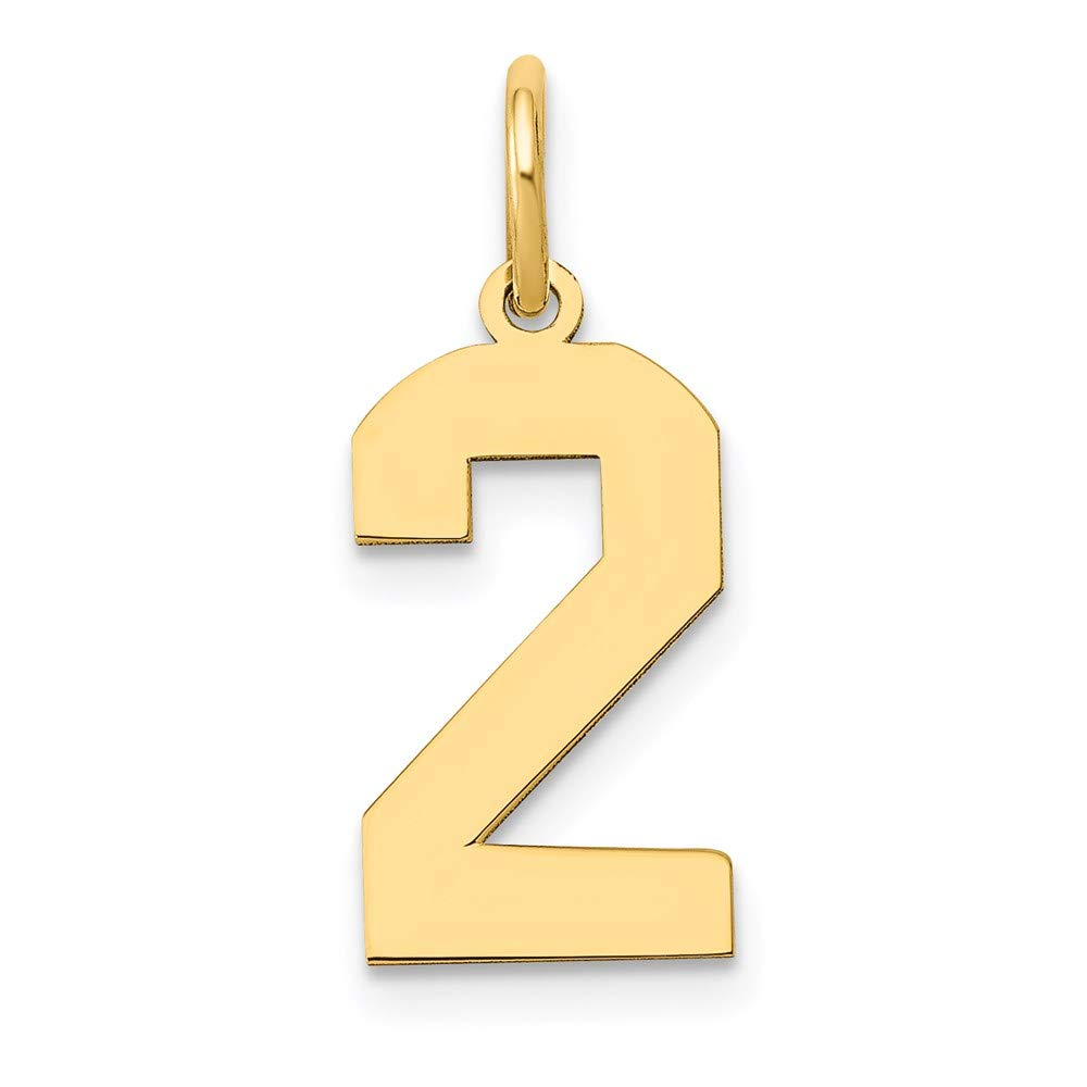 14k Yellow Gold Medium Number 2 Pendant Charm Necklace Sport Fine Jewelry For Women Gifts For Her