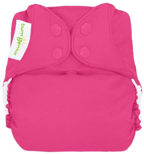 bumGenius Freetime All-In-One One-Size Snap Closure Cloth Diaper (Countess)