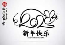 Baocicco 12x8ft Happy Chinese New Year Backdrop Welcome to 2020 Year Chinese Lunar Calendar Year of The Rat Chinese Characters Cartoon Mouse Image Photography Background Family Together Party