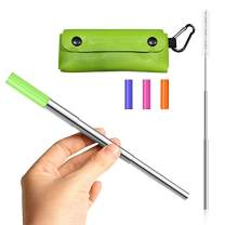 HOME TELLER Portable Reusable Drinking Straws - Telescopic Stainless Steel Metal Straw with Keychain and Cleaning Brush (Green PU Case)